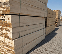 Canfor 加福